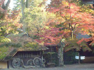 20141124新座市の平林寺に紅葉を観に出かけました。5