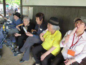 20150615東村山市にある菖蒲園です。4