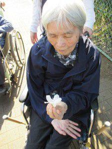 20150427黒目川のつつじがキレイに咲いていたので見に行ってきました。2