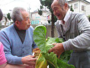 20151218野菜を続々と収穫4