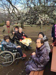 20150311小金井公園へ梅を見に散歩に出掛けました。10