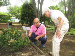 20150611東京都薬用植物園へ行ってきました!2