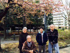 20150314そろそろ桜の季節がやってまいりました!