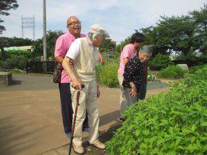 20150611東京都薬用植物園へ行ってきました!7