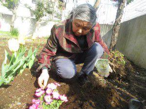 20150413利用者様とご一緒に、庭にお花を植えました!10