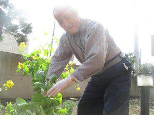 20150413利用者様とご一緒に、庭にお花を植えました!