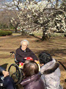 20150311小金井公園へ梅を見に散歩に出掛けました。9
