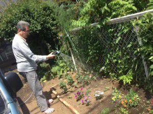 20150604庭にレンガを使った、とってもステキな花壇を利用者様と一緒に作りました!2