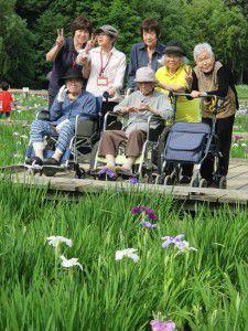 20150615東村山市にある菖蒲園です。6