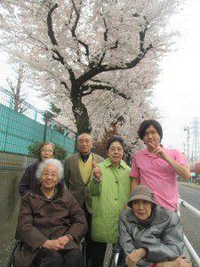 20150403花小金井からも、お花見特集をお届けします!4