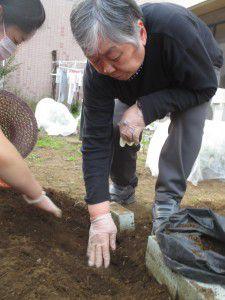 20151015お庭のリニューアル作業がここ数日で一気に進みました8