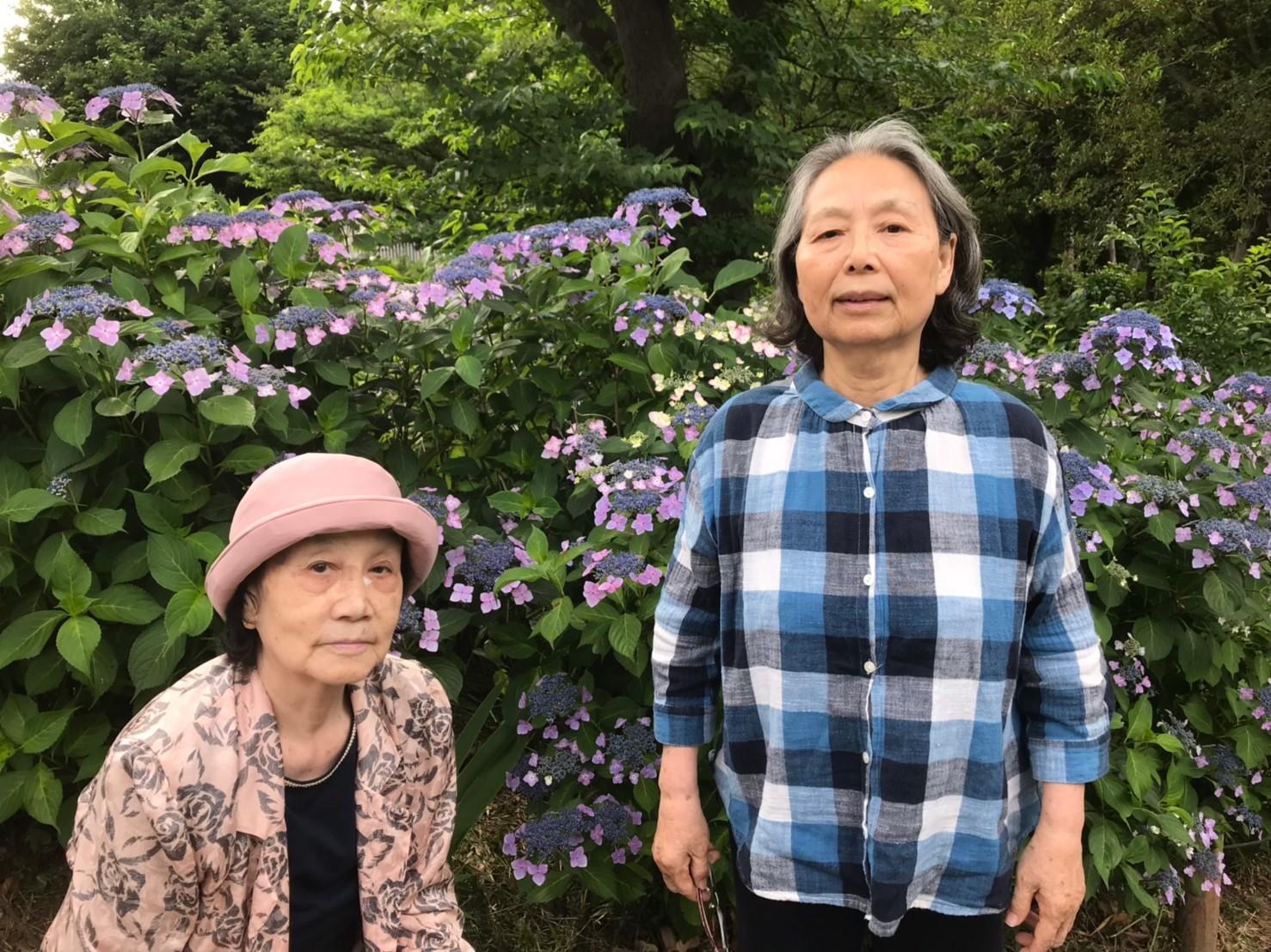 あじさい公園(花小金井) | デイサービス やすらぎ邸